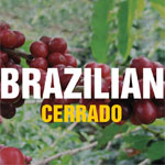 Brazilian Cerrado Coffee - Minas Gerais