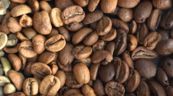 coffee-roasting-OG