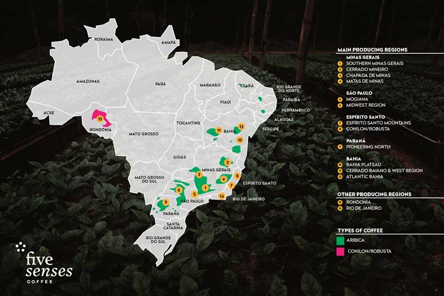 brazilian coffee regions - courtesy of Five Senses Coffee